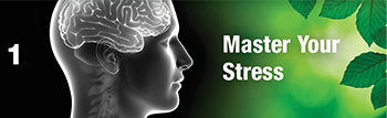 Master Your Stress